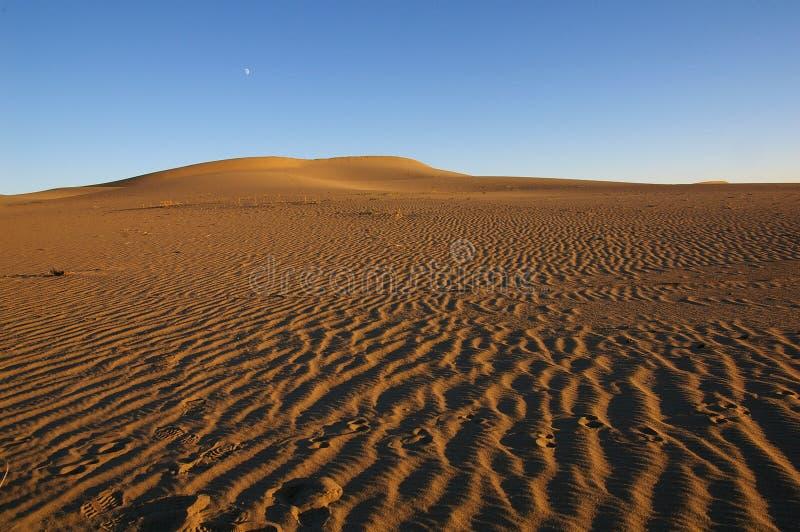 Mond auf der Wüste lizenzfreie stockfotos