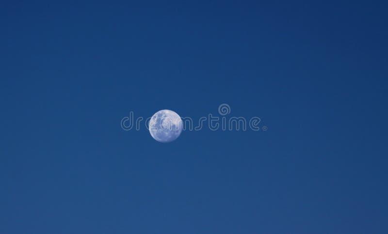Mond, der in dunkelblauen Samt-Himmel schwimmt stockbilder