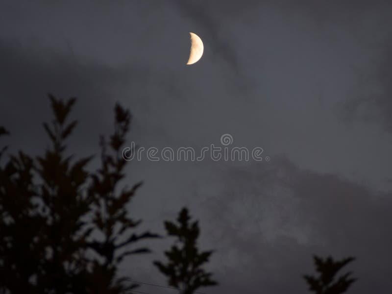 Mond in einer speziellen Nacht lizenzfreie stockfotografie