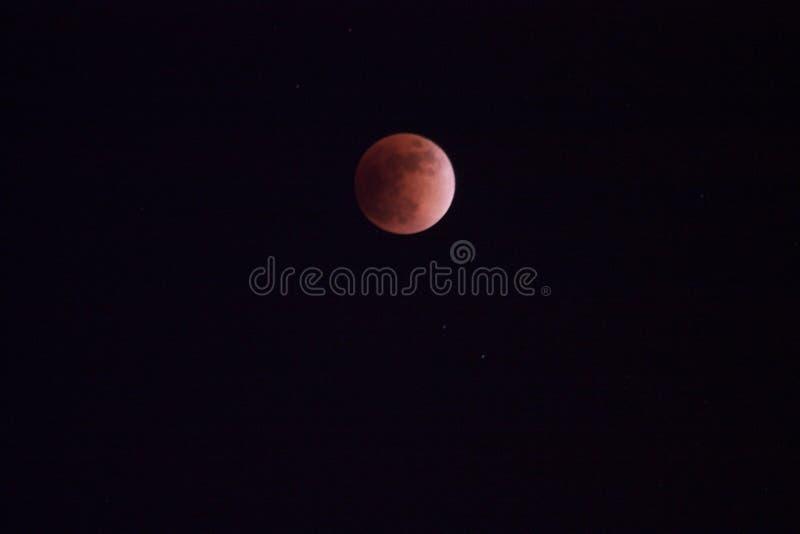Mond-Eklipse blutig lizenzfreies stockbild