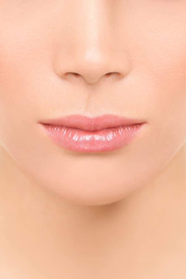 Mond en neusclose-up - de vrouw van het schoonheidsgezicht stock afbeelding