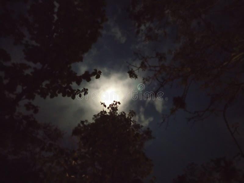 Mond im bew?lkten Himmel stockfotos