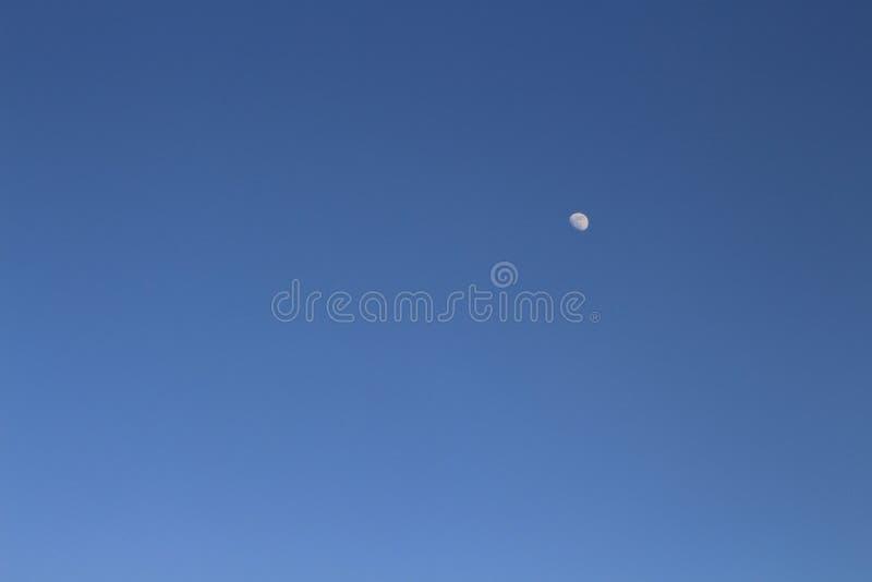 Mond im blauen Himmel stockfotos