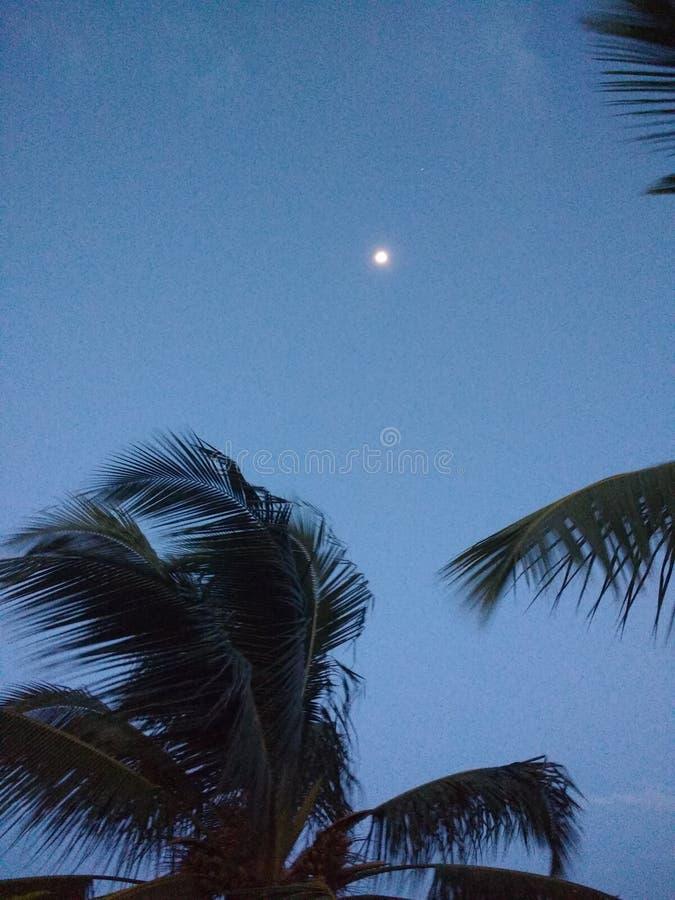 Mond und ein Stern lizenzfreies stockbild