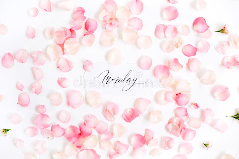 `Monday` written with calligraphy and floral pattern with pink rose petals. Flat lay, top view stock photos