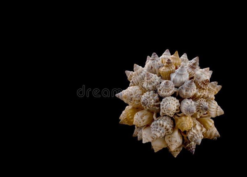 Monde de concept de diversité, de tourisme et de voyage : Boule décorative faite de divers coquillages d'isolement sur le fond no photo stock