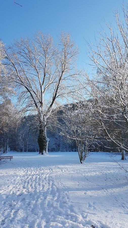 Monde de neige images stock