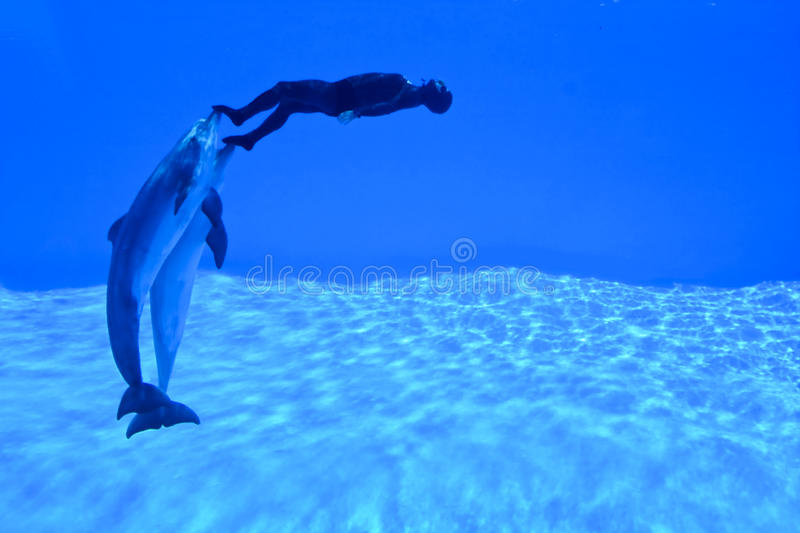 Download Mondial Record In Freediving4 Royalty Free Stock Images - Image: 14982349