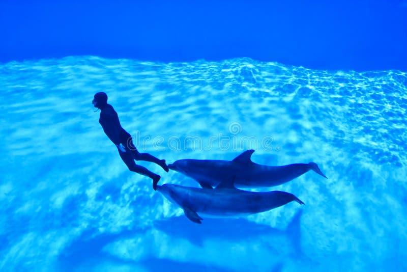 mondial register freediving2 arkivbilder