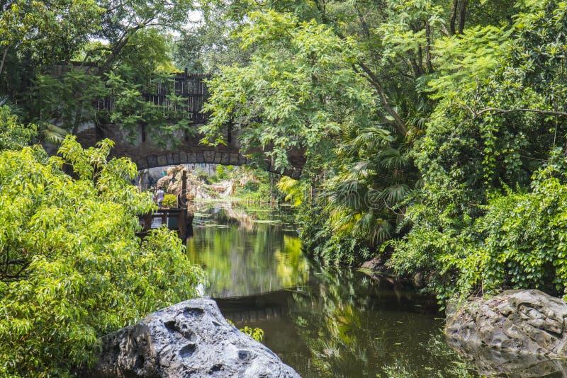 Mondo Orlando Florida Animal Kingdom di Disney fotografie stock libere da diritti