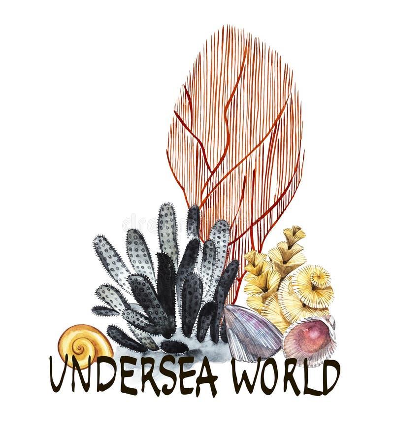 Mondo Parola-subacqueo La vita ed i coralli di mare dell'alga delle composizioni obiettano isolato su fondo bianco Acquerello dis illustrazione vettoriale