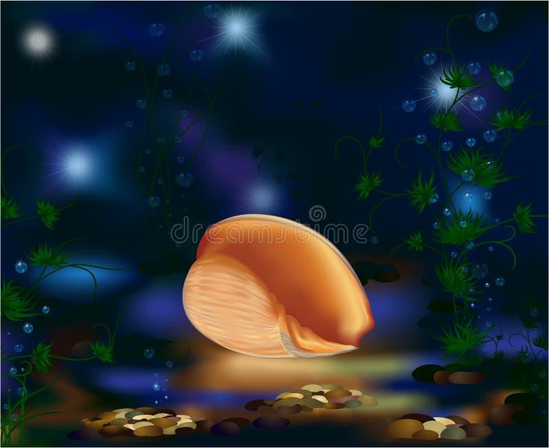 Mondo, seashell e piante subacquei illustrazione di stock