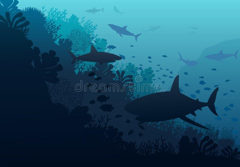 Mondo subacqueo dell'oceano con lo squalo illustrazione di stock