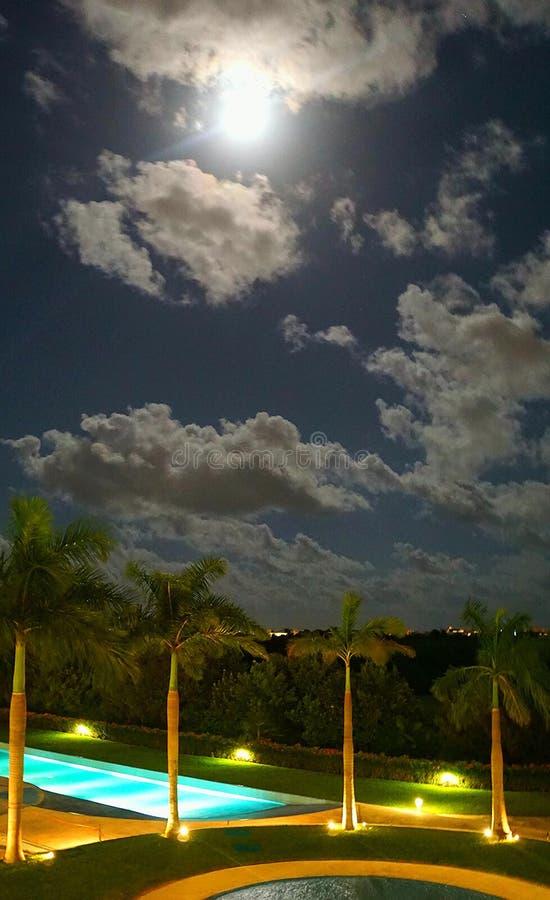 Mondschein im Paradies stockbilder