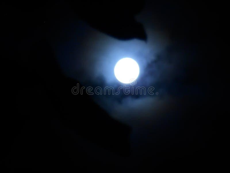 Mondscheinschatten lizenzfreies stockbild