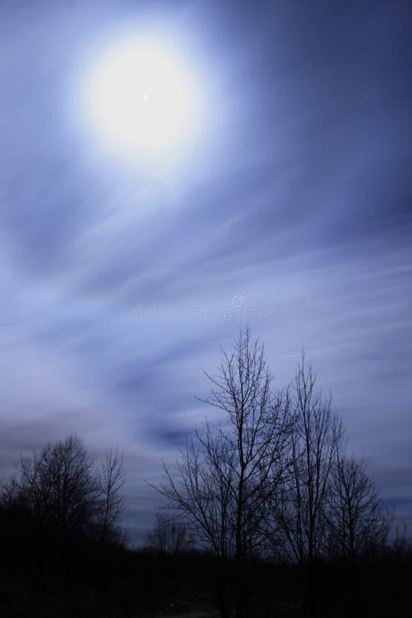 Mondscheinszene stockfoto