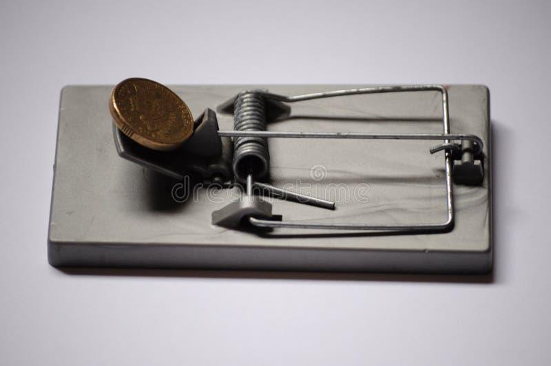 Moneda australiana en una avaricia y una tentación de la trampa del ratón imagen de archivo