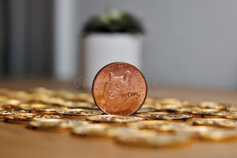 Moneda de cobre amarillo del dogecoin fotografía de archivo libre de regalías