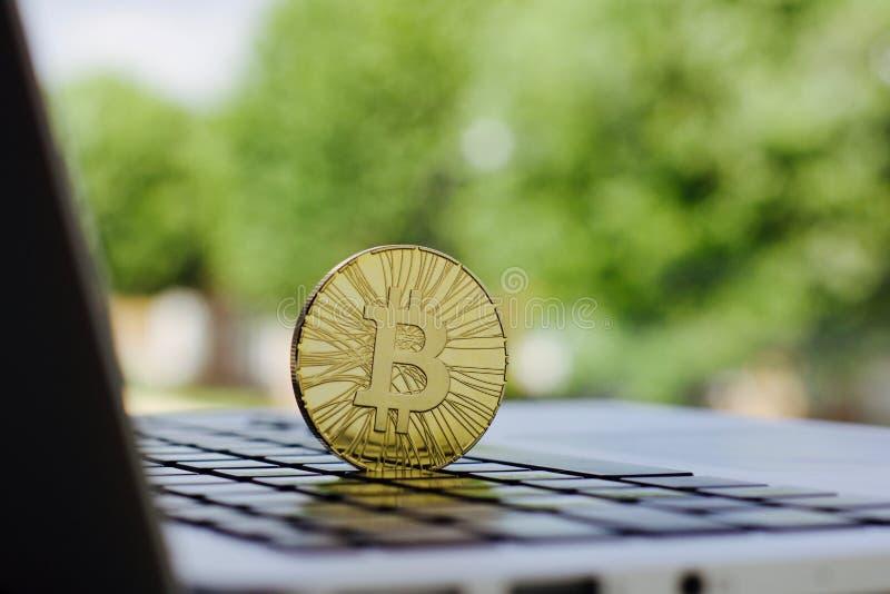 Moneda del bitcoin del oro imagen de archivo libre de regalías