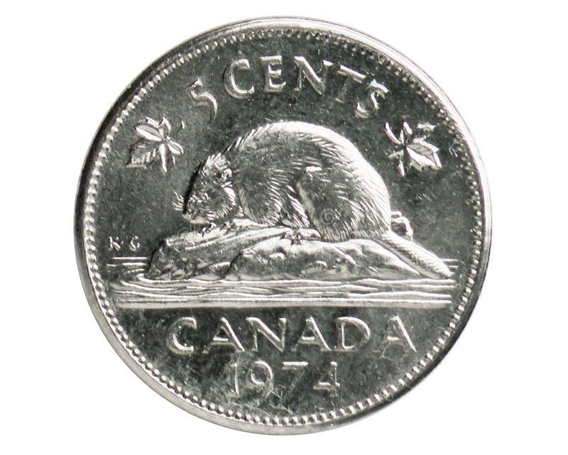 Moneda del castor de 5 centavos, 1952~Today - serie de Elizabeth II, banco de Canadá imagen de archivo libre de regalías