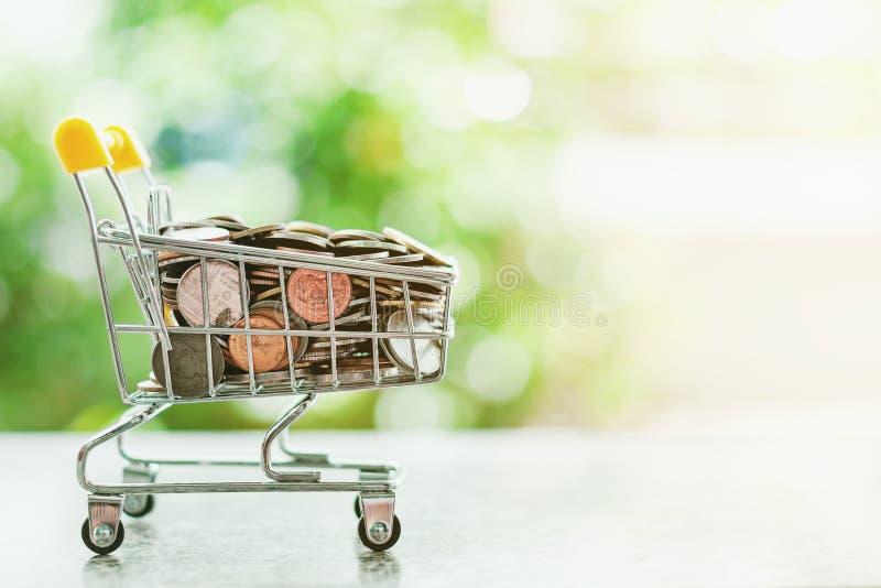 Moneda del dinero en mini carro de la compra o carretilla imagen de archivo libre de regalías