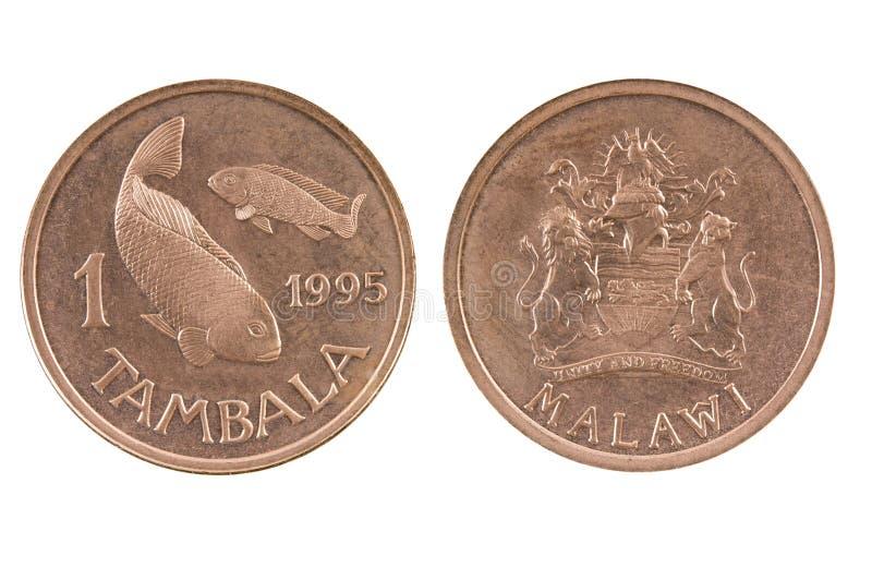 Monedas de Malawi imagen de archivo