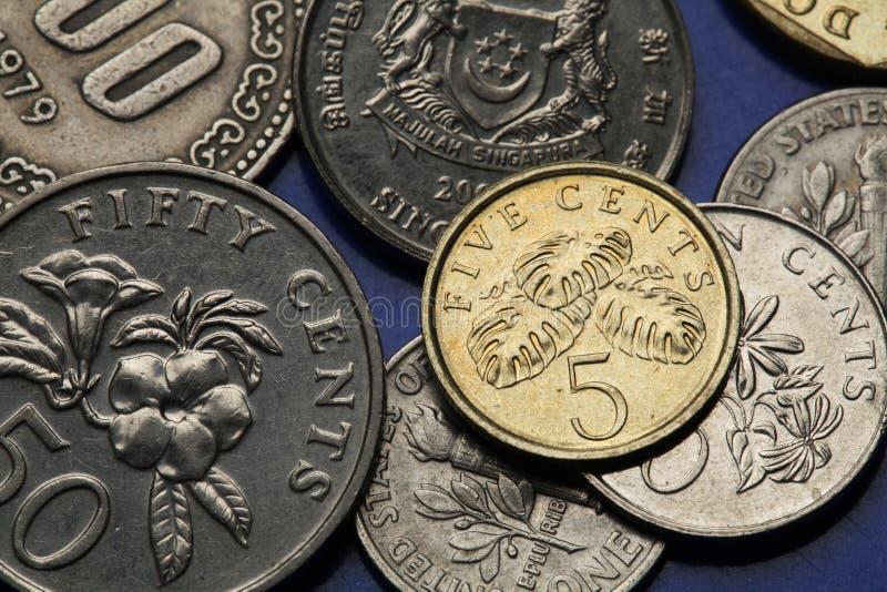 Monedas de Singapur imagen de archivo libre de regalías