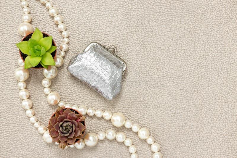 Monedero de plata, collar de la perla y plantas suculentas imágenes de archivo libres de regalías