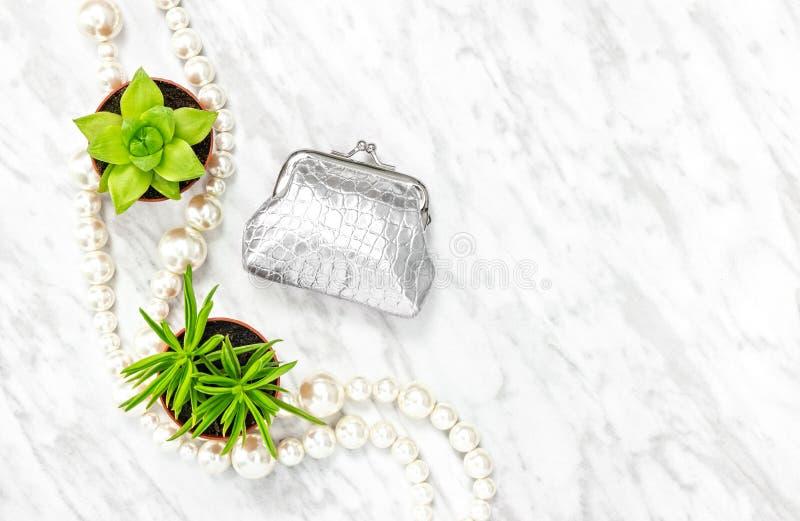 Monedero de plata, plantas suculentas y collar de la perla fotografía de archivo libre de regalías