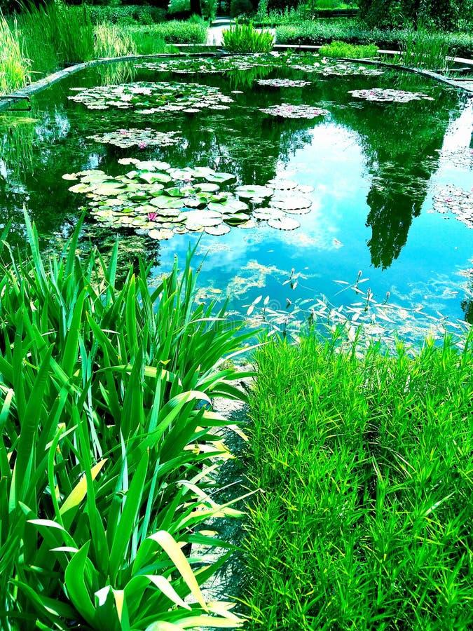 Monet en Nanufars stock fotografie