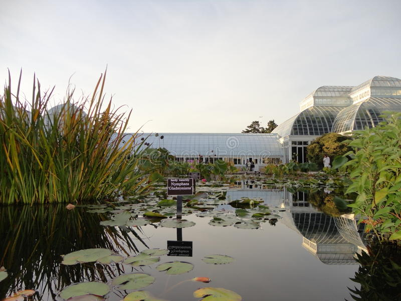 Monets Garden. Claude Monet was an avid gardener who once reflected that perhaps flowers were the reason he became a painter. This exhibition explores the legacy stock photography