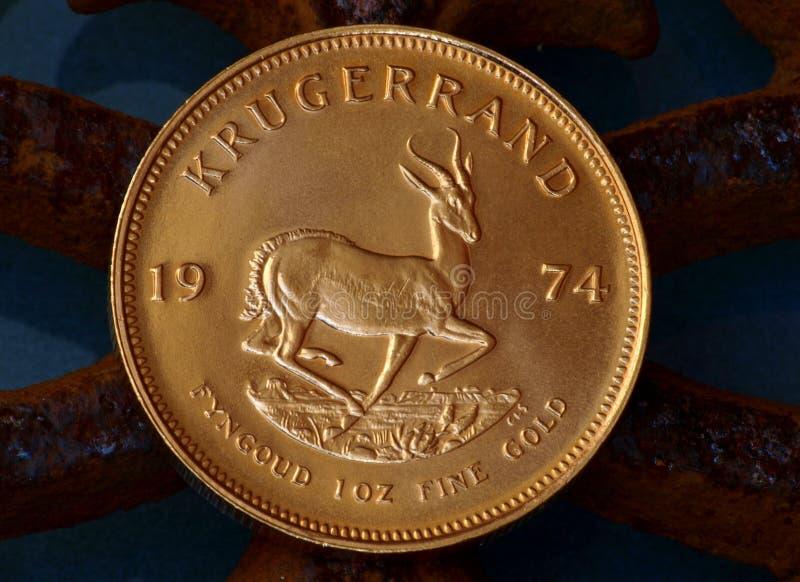 moneta obraz royalty free