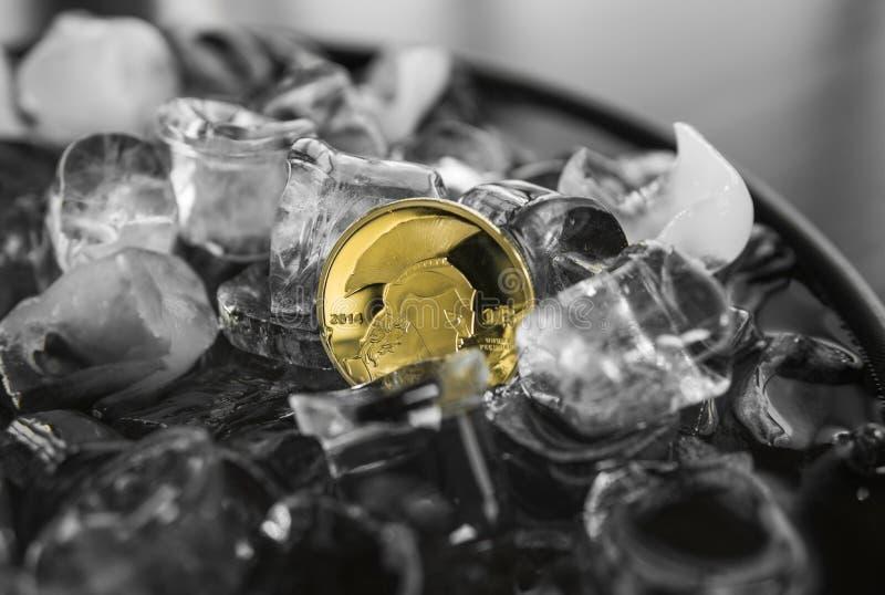 Moneta del titano dell'oro sul fondo del ghiaccio Estrazione mineraria di Blockchain Fondi Digital e concetto cripto virtuale di  immagini stock libere da diritti