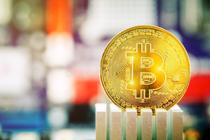 Moneta di oro di bitcoin contro lo sfondo della scheda madre fotografia stock