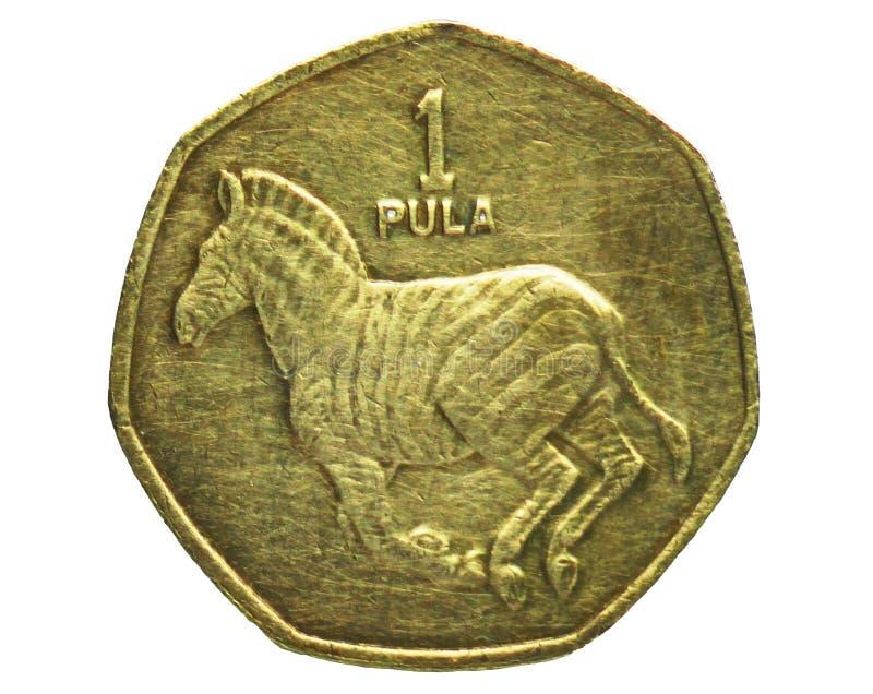 1 moneta di Pola, la Banca del Botswana Complemento, edizione 1991 fotografia stock libera da diritti