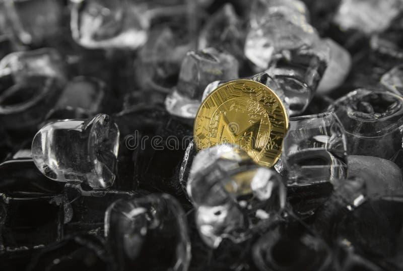 Moneta fisica di monero dell'oro del metallo di valuta di Digital sul fondo del ghiaccio Il concetto dello scambio nell'inverno f fotografia stock libera da diritti