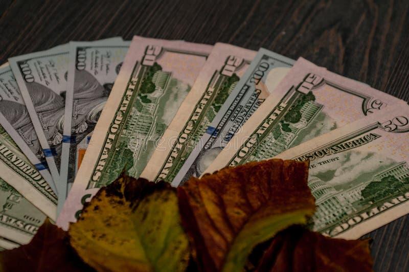 Monetaire fondsen, financiën, dollars - als bedrijfsconcept royalty-vrije stock afbeelding