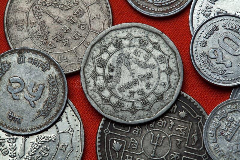 Monete del Nepal fotografia stock libera da diritti