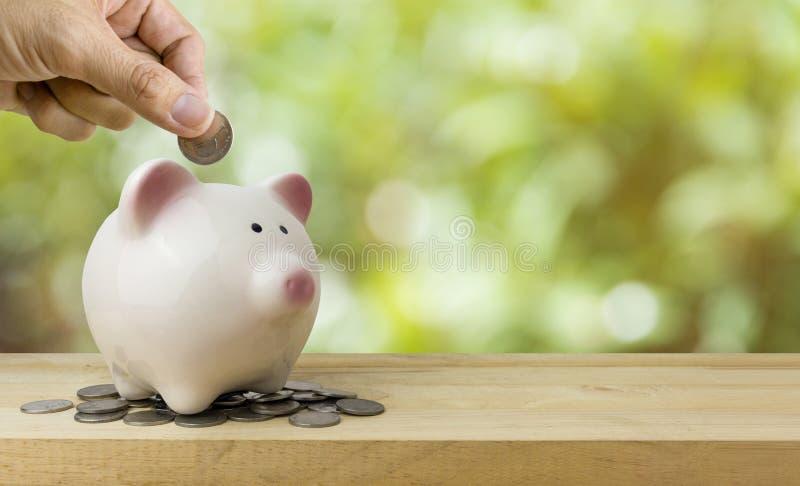 Monete di risparmi del porcellino salvadanaio, concetto di risparmio dei soldi fotografia stock libera da diritti