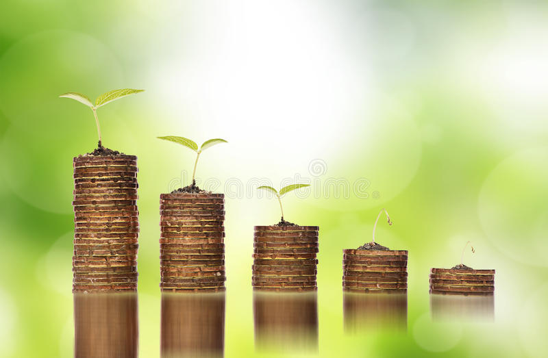 Monete dorate in suolo con le plantule che mostrano alla crisi di investimento finanziario immagini stock