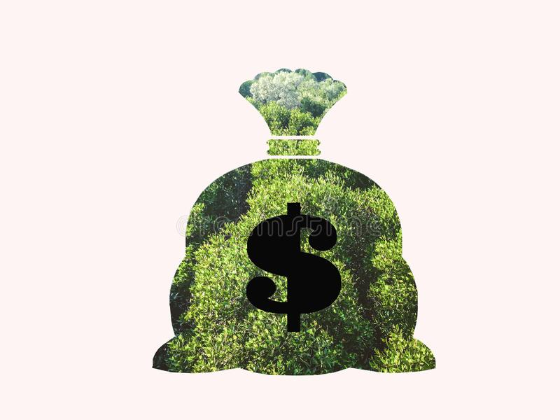 Money bag with dollar sign and money tree growing out of top isolated on white background stock illustration