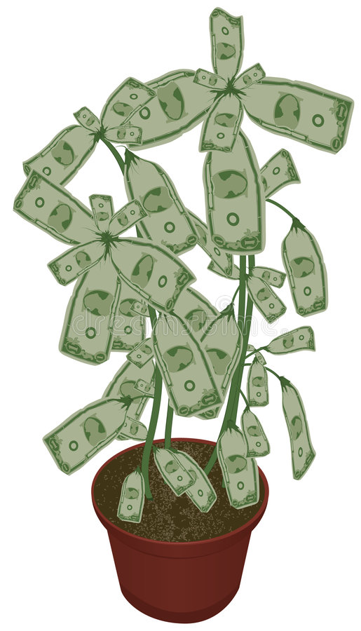Download Money Does Grow On Trees Royalty Free Stock Photography - Image: 8845337