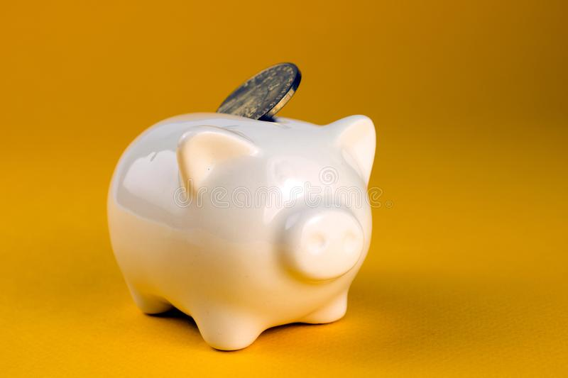 Money in 2019 financial savings. Piggy bank with coins, on yellow background royalty free stock images