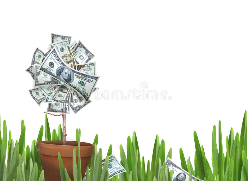 Money flower. A flower in a clay pot with petals of US currency to include 1, 100, 50 and 20s. Concept for money growth. Ben Franklin has a slight smirk. Add royalty free stock photos