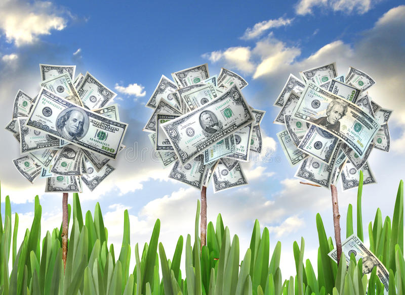 Money flowers. Three money flowers in a row of grasses with a cloudy sky. Concept for asset and money growth and investment royalty free stock images
