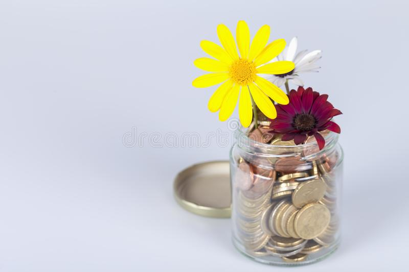 Money flowers in a glass jar full of euro coins royalty free stock image