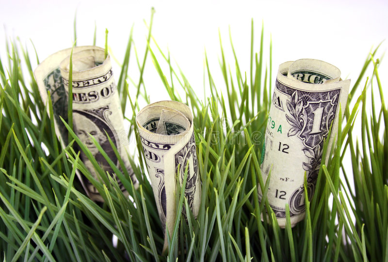Money In The Green Grass Stock Image
