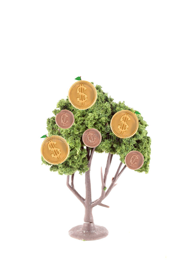 Money growing on tree. Small miniature tree growing copper cents and gold dollar coins isolated on a white background... guess money does grow on trees royalty free stock image