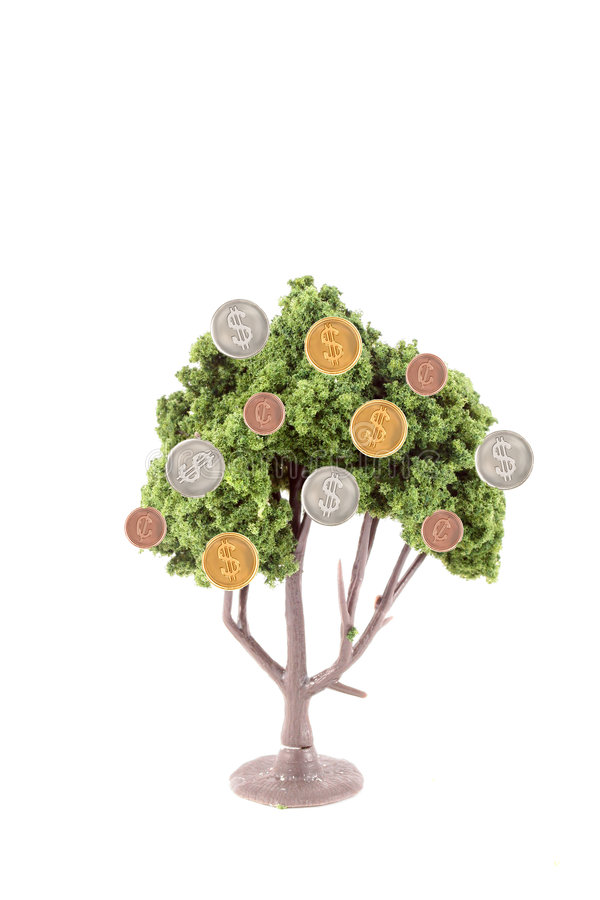 Money growing on tree. Small miniature tree growing copper cents with silver and gold dollar coins isolated on a white background... guess money does grow on stock photography