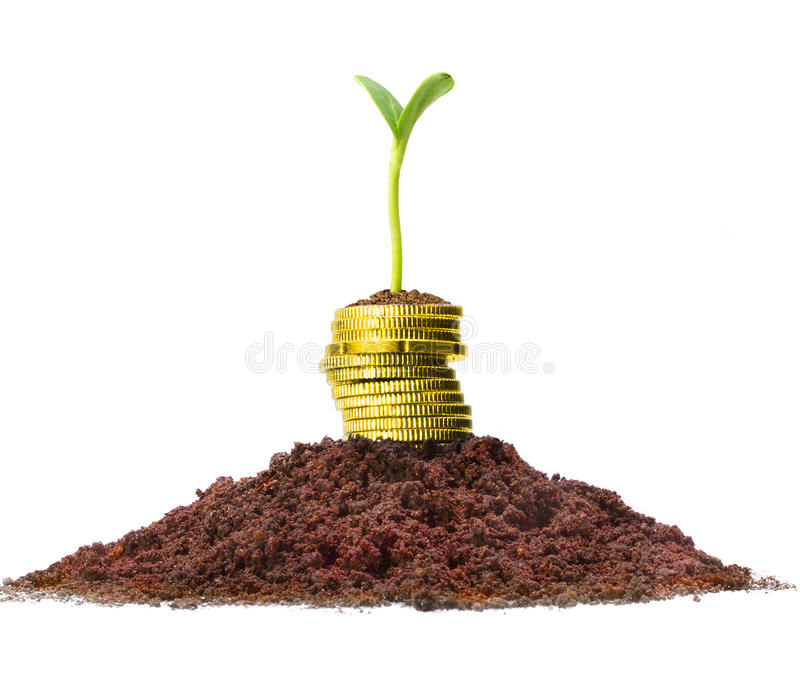 Money growth. stock images